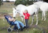 caballos15.jpg