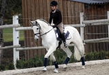 caballos21.jpg
