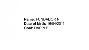 FundadorN__EN_dats