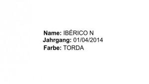 IbericoN_DE_dats