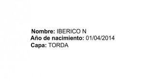 IbericoN_dats