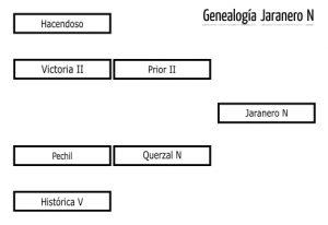 jaraneron_gen