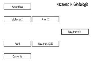 nazarenon_fr