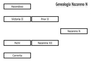 nazarenon_gen