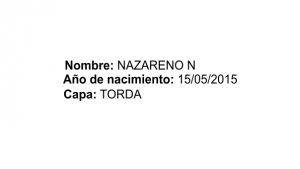 nazarenon_dats